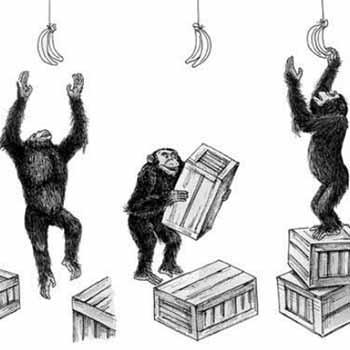 小猴子捞月的简笔画 动漫 猴子捞月